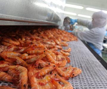 Produit de la mer - Industrie